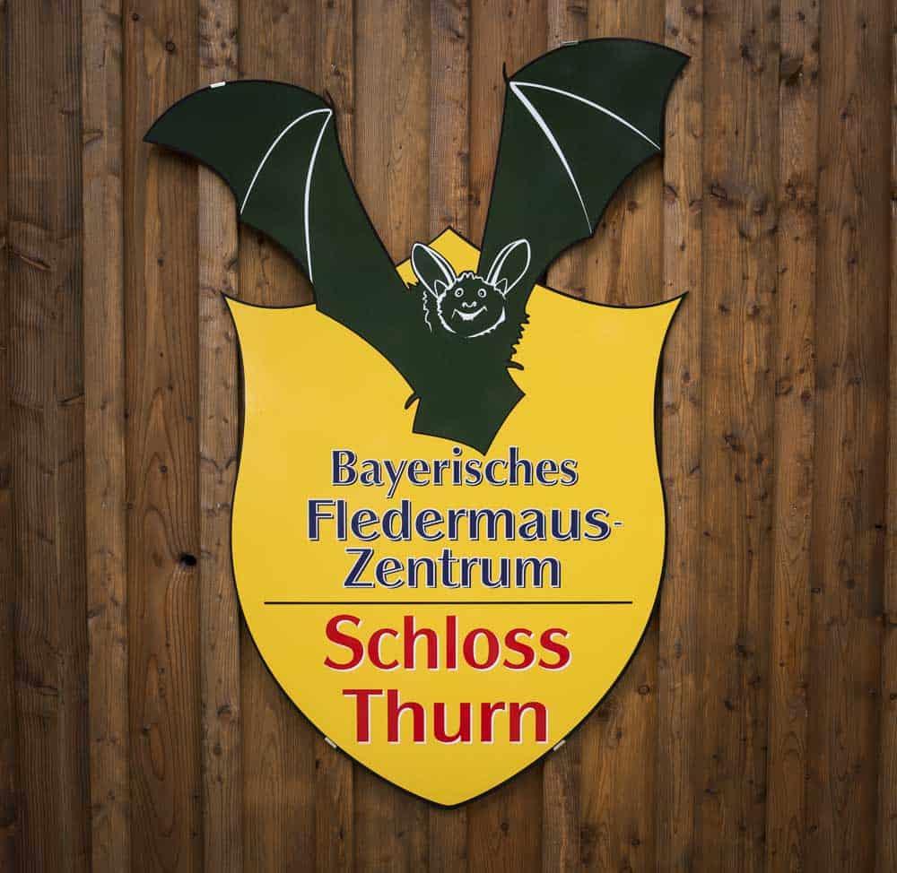 bayrisches fledermauszentrum